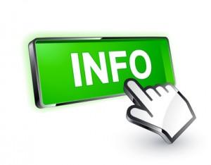 info1-300x234
